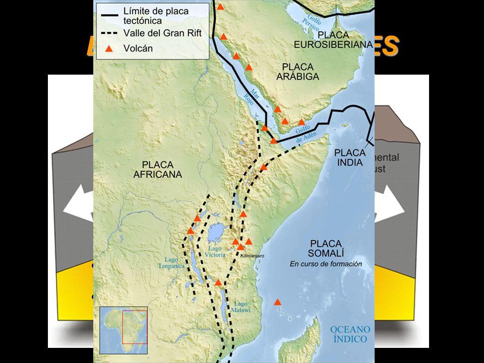 BORDES PASIVOS Sin vulcanismo. Sismicidad: focos someros. Sin relieve característico.