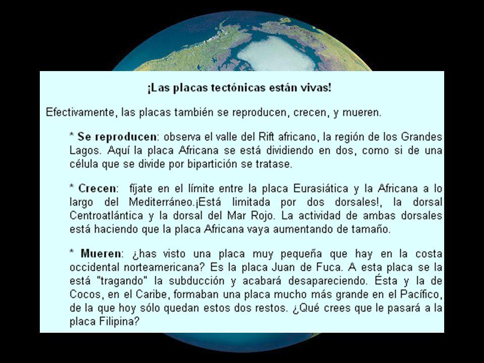 BIBLIOGRAFÍA http://www.slideshare.net/pleurodeles/teo rias-geologicashttp://www.slideshare.net/pleurodeles/teo rias-geologicas http://www.slideshare.net/MMatas/deriva -continental-presentation-778641http://www.slideshare.net/MMatas/deriva -continental-presentation-778641 http://pubs.usgs.gov/gip/dynamic/dynami c.pdfhttp://pubs.usgs.gov/gip/dynamic/dynami c.pdf http://web.usal.es/~gabi/APUNTES/TEM A8.PDFhttp://web.usal.es/~gabi/APUNTES/TEM A8.PDF http://www.ig.uit.no/webgeology/webgeol ogy_files/spanish/plate_tect_sp.htmlhttp://www.ig.uit.no/webgeology/webgeol ogy_files/spanish/plate_tect_sp.html