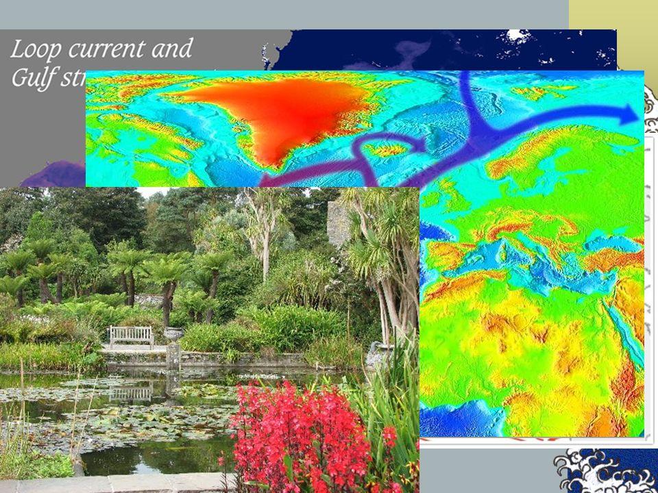 Las corrientes oceánicas son movimientos predominantemente horizontales y persistentes en un sentido. Pueden ser de dos tipos: corrientes superficiale