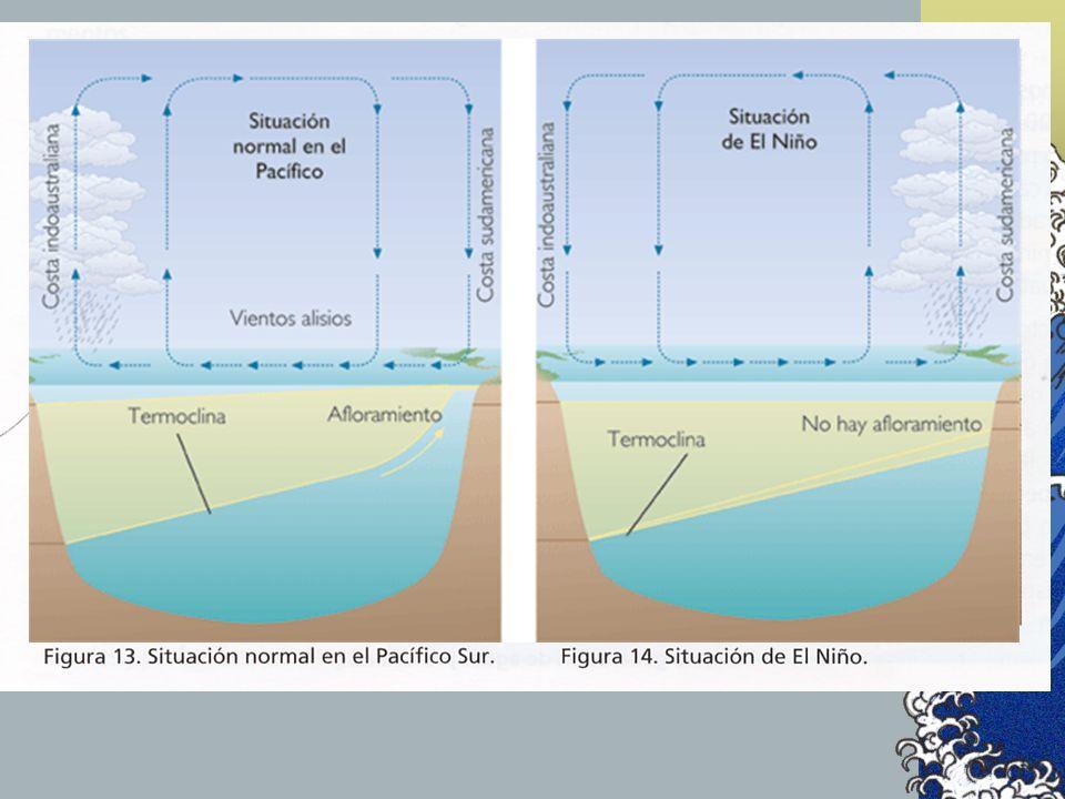 En condiciones normales, los vientos alisios alejan las precipitaciones hacia el oeste y permiten el afloramiento y fertilización de la zona.