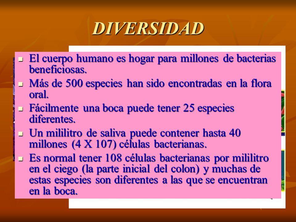 DIVERSIDAD El cuerpo humano es hogar para millones de bacterias beneficiosas. El cuerpo humano es hogar para millones de bacterias beneficiosas. Más d