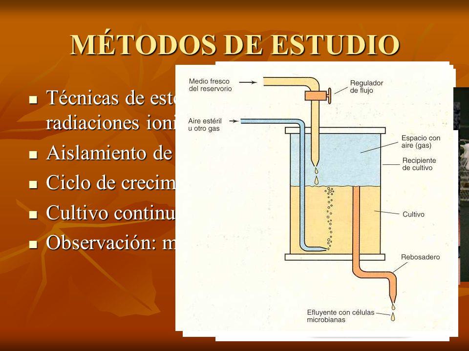 MÉTODOS DE ESTUDIO Técnicas de esterilización: autoclave, radiaciones ionizantes, filtración... Técnicas de esterilización: autoclave, radiaciones ion