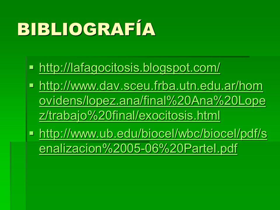 BIBLIOGRAFÍA http://lafagocitosis.blogspot.com/ http://lafagocitosis.blogspot.com/ http://lafagocitosis.blogspot.com/ http://www.dav.sceu.frba.utn.edu
