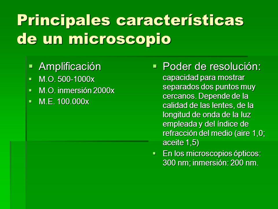 Principales características de un microscopio Amplificación Amplificación M.O. 500-1000x M.O. 500-1000x M.O. inmersión 2000x M.O. inmersión 2000x M.E.