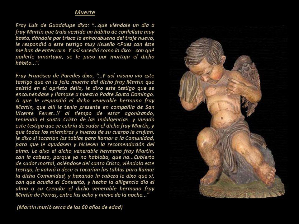 Enfermedad -- --------------------------------------------------------------------------- -Fray Antonio Estrada dixo:...que desde que fray Martín de P