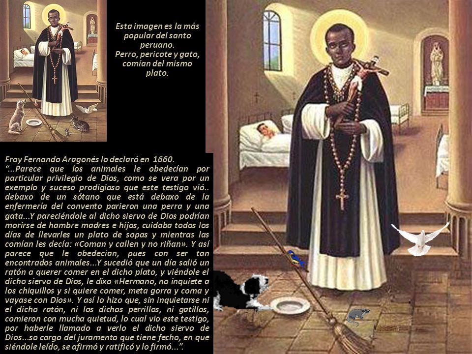 Su festividad en el santoral católico se celebra, el día de su muerte, el 3 de noviembre. En la Iglesia de Santo Domingo en Lima, donde descansan sus