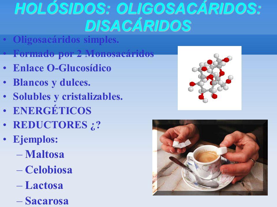 Oligosacáridos simples. Formado por 2 Monosacáridos Enlace O-Glucosídico Blancos y dulces.