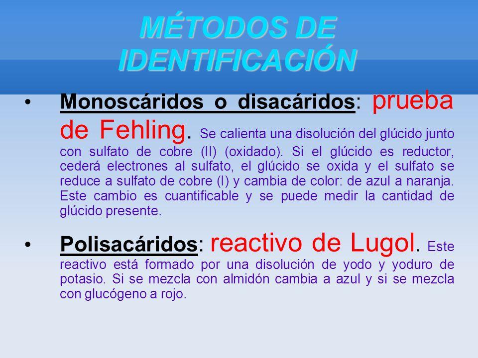 MÉTODOS DE IDENTIFICACIÓN Monoscáridos o disacáridos: prueba de Fehling.
