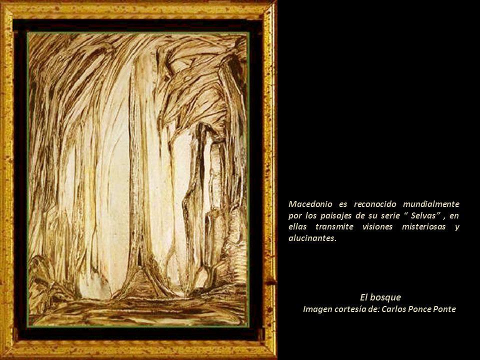 Expuso en: Perú, Argentina, Chile, París y diez veces en Nueva York-USA. Destaca la retrospectiva en el Museo de Arte de Lima en 1968. En el catálogo