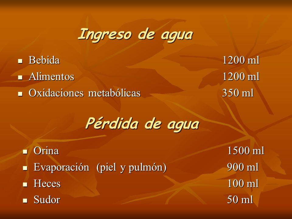 Ingreso de agua Bebida1200 ml Bebida1200 ml Alimentos1200 ml Alimentos1200 ml Oxidaciones metabólicas350 ml Oxidaciones metabólicas350 ml Orina1500 ml