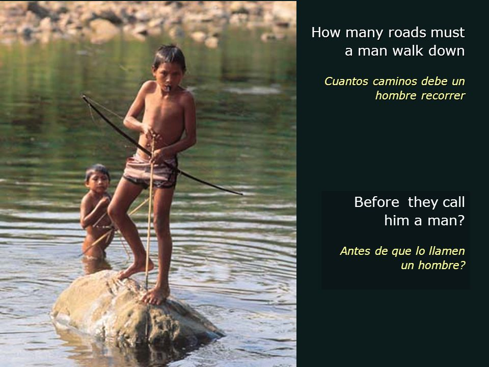 How many roads must a man walk down Cuantos caminos debe un hombre recorrer Before they call him a man.