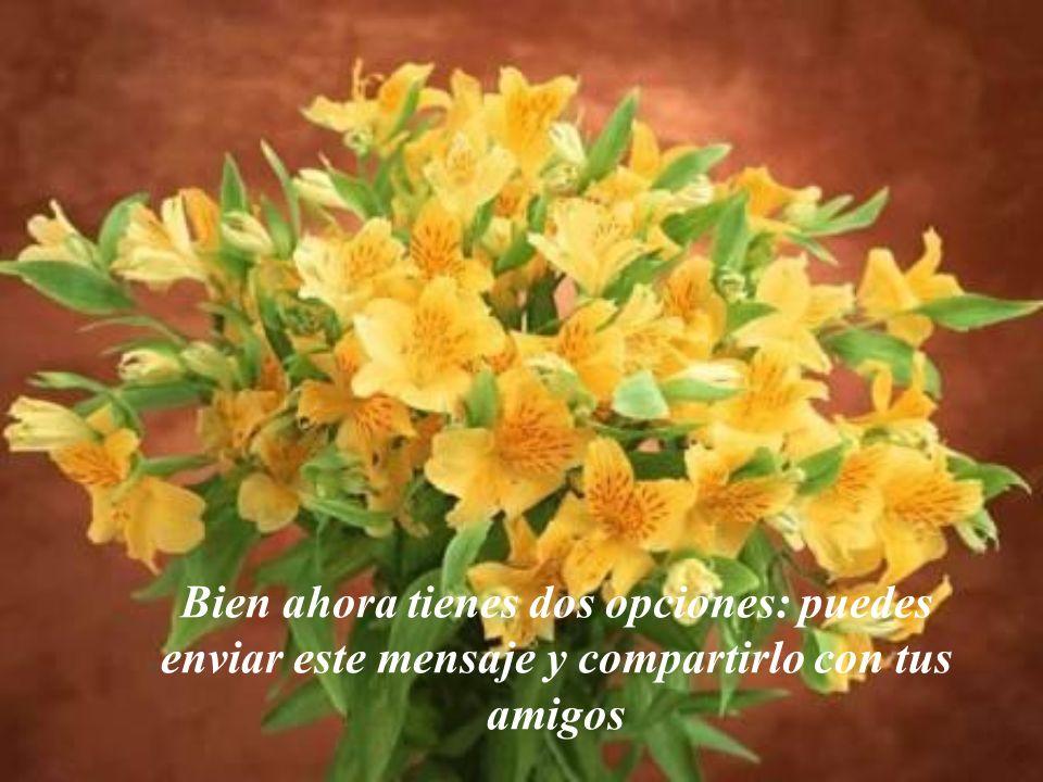 Gracias Dios porque tu amor se manifiesta en las manos y en los corazones humanos.