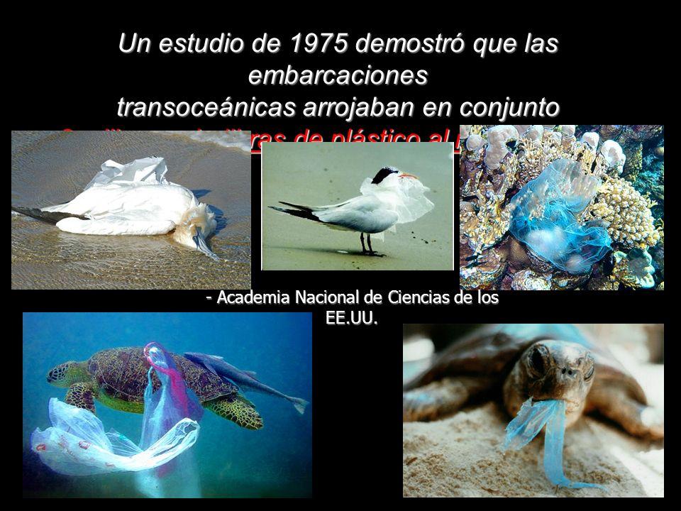 Un estudio de 1975 demostró que las embarcaciones transoceánicas arrojaban en conjunto 8 millones de libras de plástico al mar cada año - Academia Nacional de Ciencias de los EE.UU.