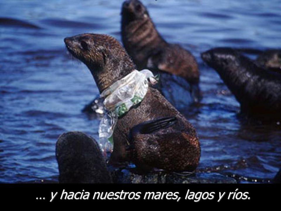 … y hacia nuestros mares, lagos y ríos.