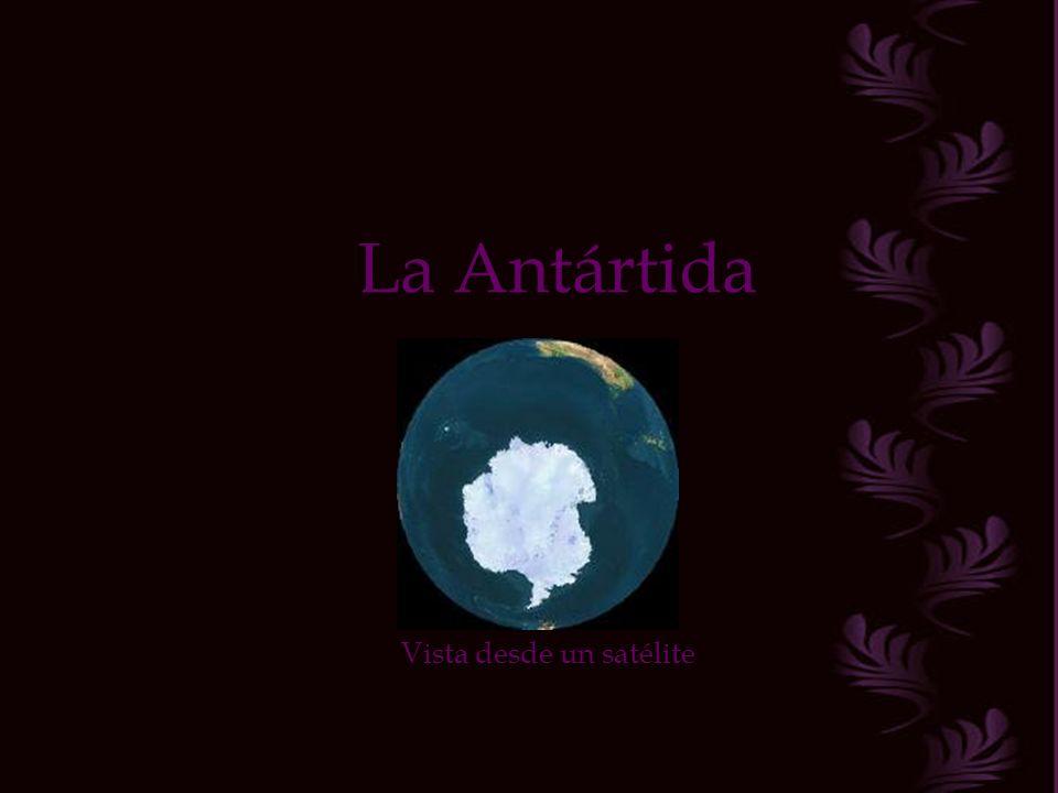 Música: Royal Philharmonic Aria de amor ( De Tosca ) Dirigida por el Español Luis Cobos, el mejor Director, Arreglista y Compositor según mi modo de ver.