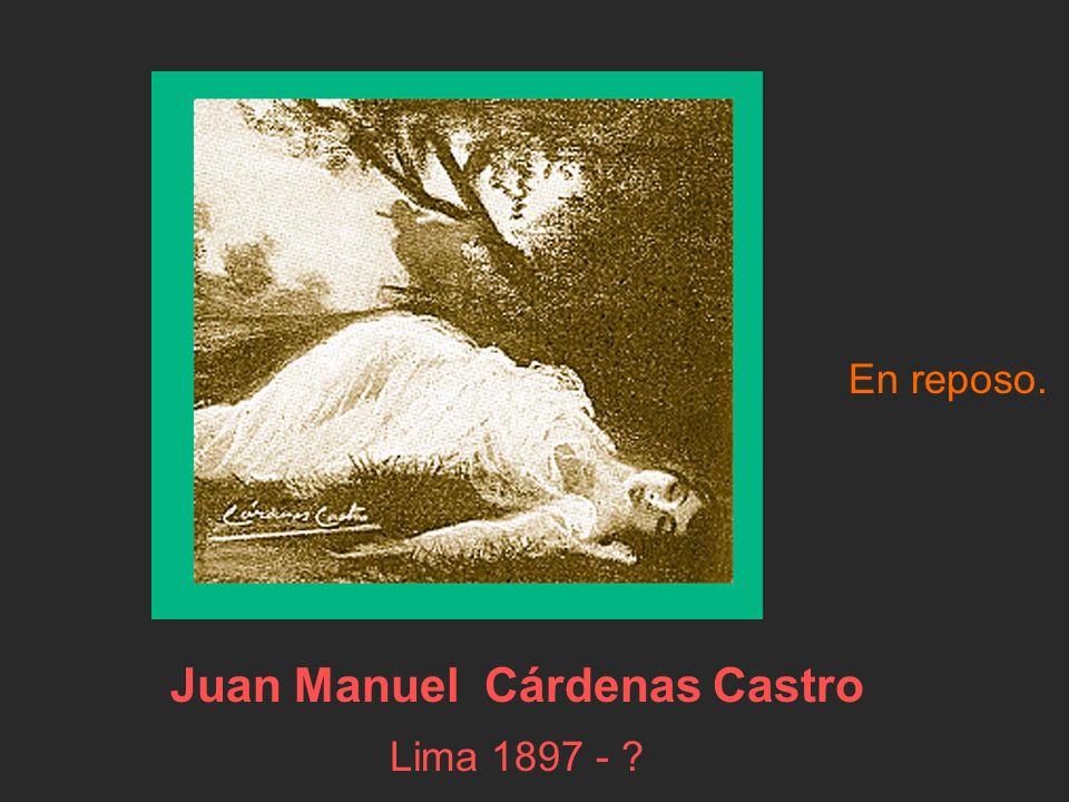 Juan Manuel Cárdenas Castro Lima 1897 - ? En reposo.