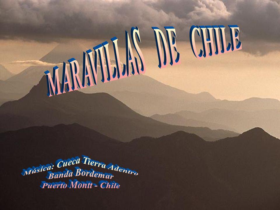 Geoglifo de Chiza, cerca de Arica