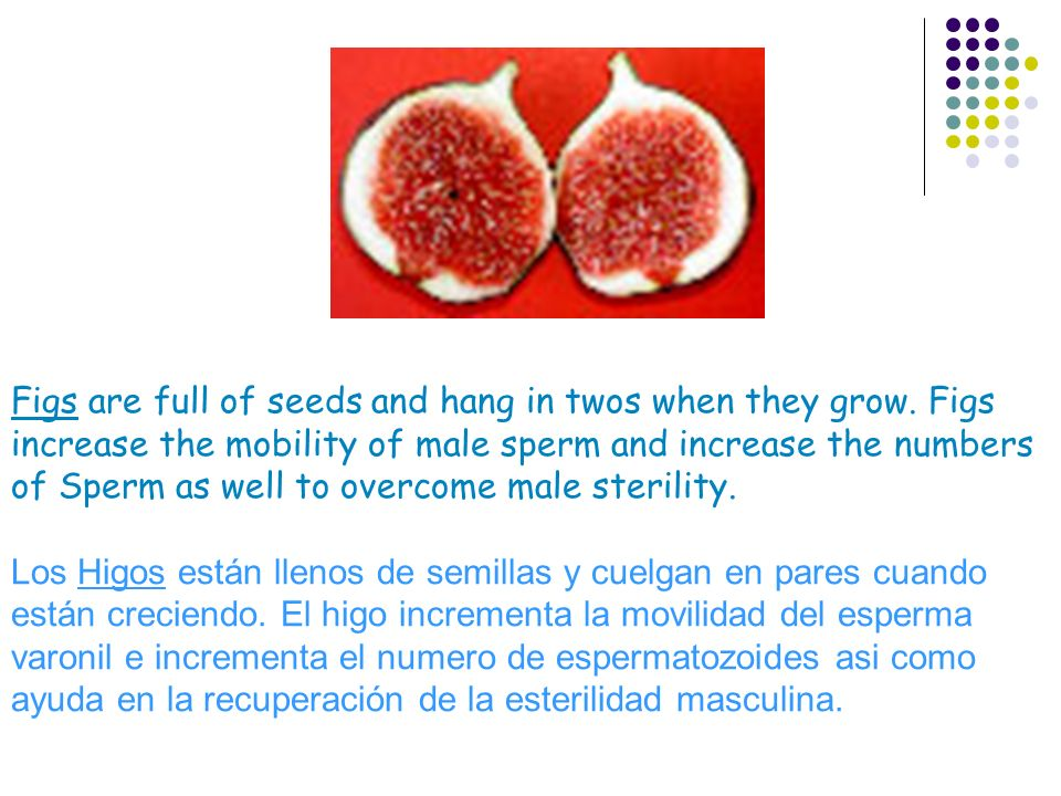 Figs are full of seeds and hang in twos when they grow. Figs increase the mobility of male sperm and increase the numbers of Sperm as well to overcome