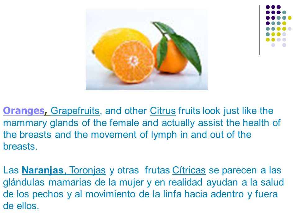Oranges, Grapefruits, and other Citrus fruits look just like the mammary glands of the female and actually assist the health of the breasts and the mo