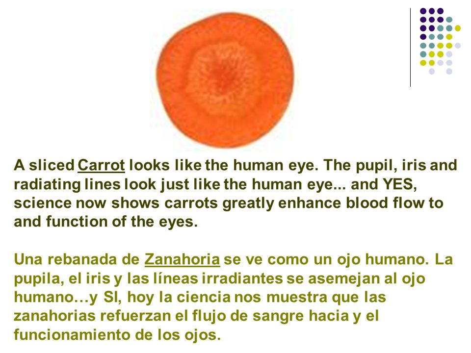 A sliced Carrot looks like the human eye. The pupil, iris and radiating lines look just like the human eye... and YES, science now shows carrots great