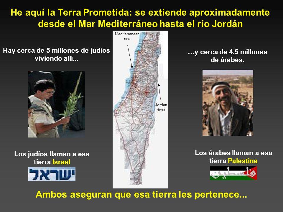 Compartiendo la Tierra Prometida Un Intento de Análisis Equilibrado del Conflicto Israelo-Palestino