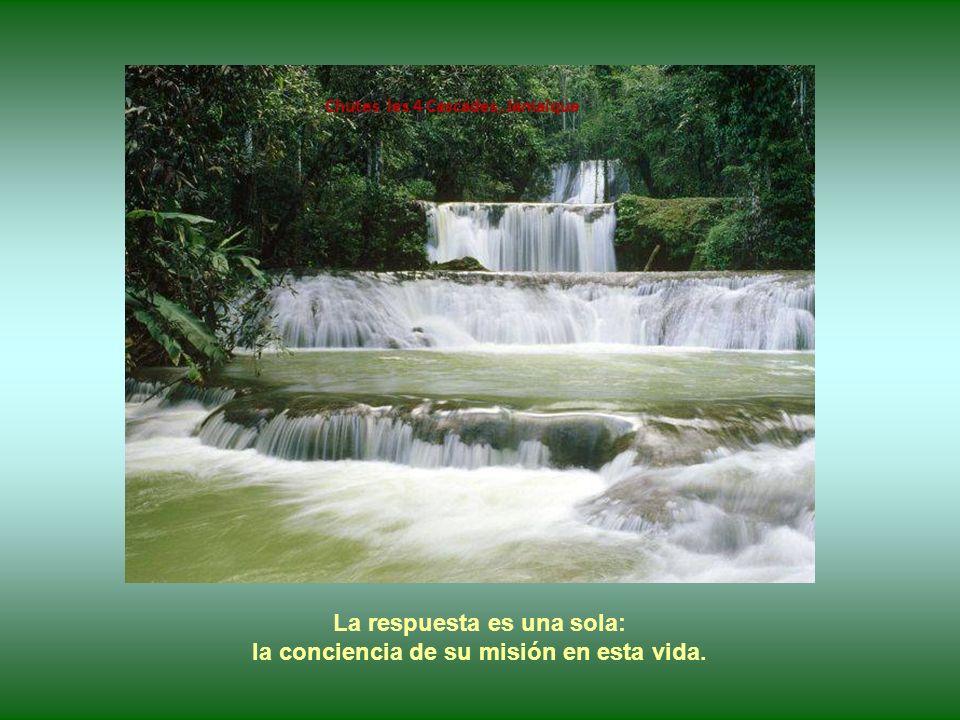 Chutes El Nicho, Sierra de Trinidad, Cuba ¿Qué mueve a esas personas generosas a trabajar sin desmayo, a no desistir nunca?...