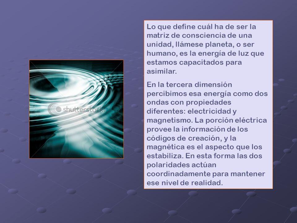 La consciencia es aquella posibilidad de comprender el sentido de la vida, según un determinado nivel de percepción, para los ciudadanos de la Tierra,