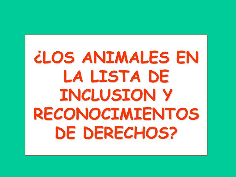¿LOS ANIMALES EN LA LISTA DE INCLUSION Y RECONOCIMIENTOS DE DERECHOS?