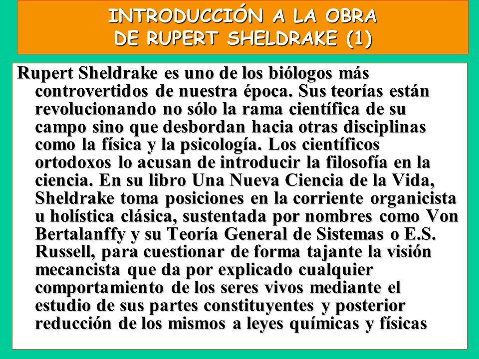 INTRODUCCIÓN A LA OBRA DE RUPERT SHELDRAKE (1) Rupert Sheldrake es uno de los biólogos más controvertidos de nuestra época. Sus teorías están revoluci