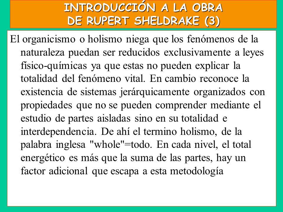 INTRODUCCIÓN A LA OBRA DE RUPERT SHELDRAKE (3) El organicismo o holismo niega que los fenómenos de la naturaleza puedan ser reducidos exclusivamente a