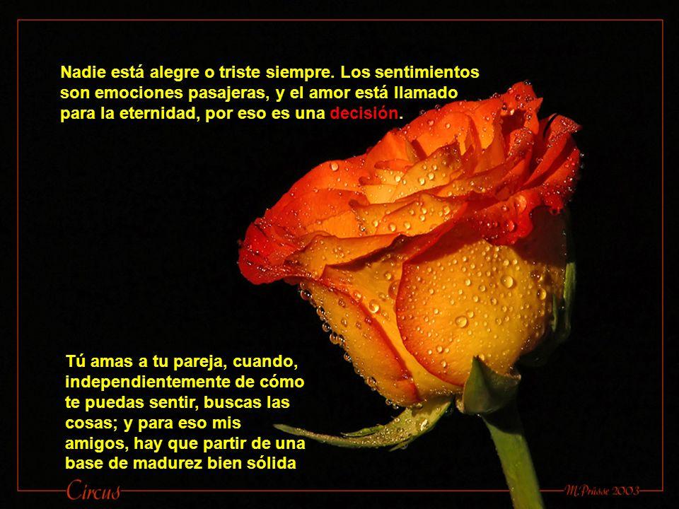 Lee con atención: el amor es una decisión que busca el bien de la persona amada.
