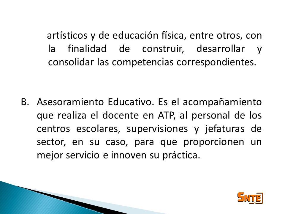 artísticos y de educación física, entre otros, con la finalidad de construir, desarrollar y consolidar las competencias correspondientes. B.Asesoramie