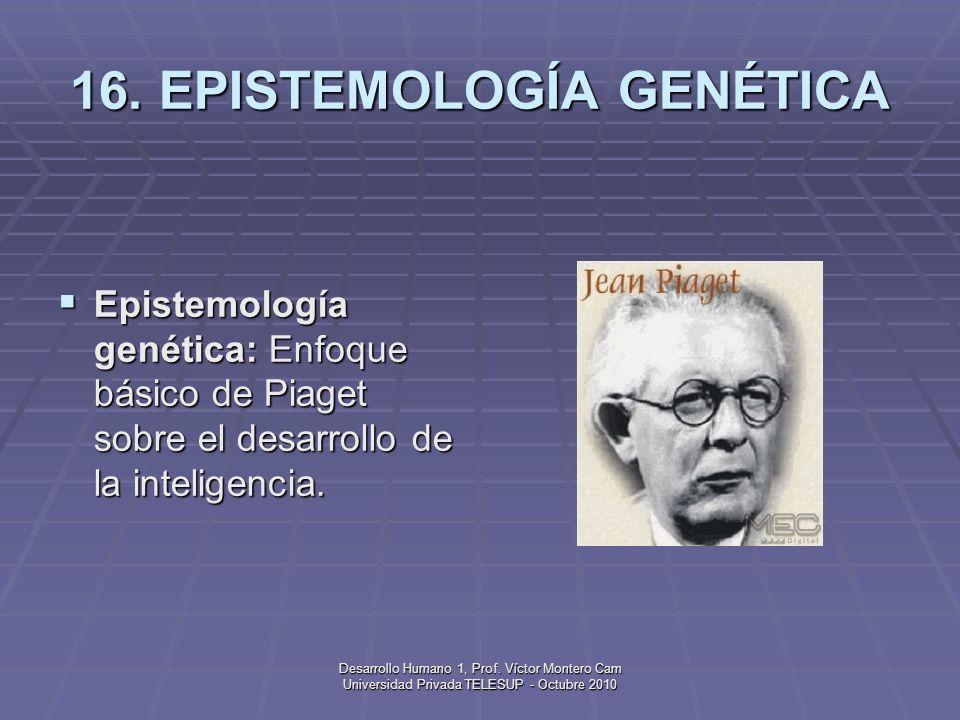 Desarrollo Humano 1, Prof. Víctor Montero Cam Universidad Privada TELESUP - Octubre 2010 15. EMBRIÓN Embrión: Organismo en desarrollo dentro del útero