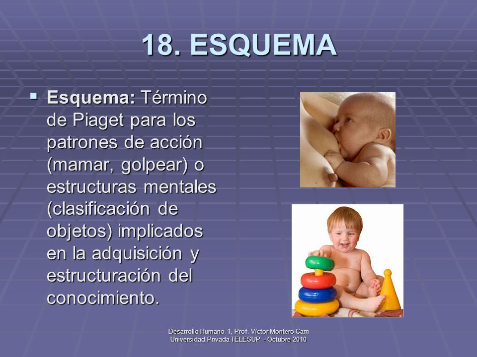 Desarrollo Humano 1, Prof. Víctor Montero Cam Universidad Privada TELESUP - Octubre 2010 17. ESPERMATOZOIDE Espermatozoide: Célula sexual o reproducti