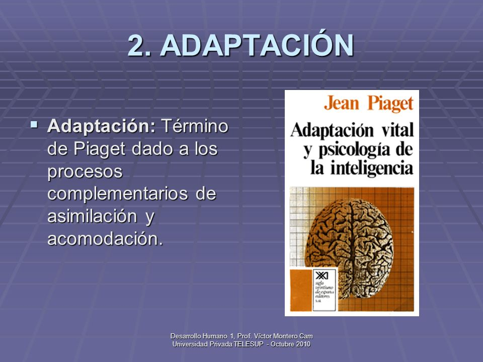 Desarrollo Humano 1, Prof. Víctor Montero Cam Universidad Privada TELESUP - Octubre 2010 1. ACOMODACIÓN Acomodación: Término de Piaget para modificar