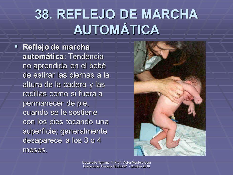 Desarrollo Humano 1, Prof. Víctor Montero Cam Universidad Privada TELESUP - Octubre 2010 37. REFLEJO Reflejo: Respuesta no aprendida a un estímulo esp
