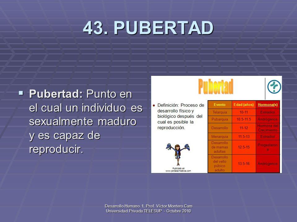 Desarrollo Humano 1, Prof. Víctor Montero Cam Universidad Privada TELESUP - Octubre 2010 42. PERÍODO PRENATAL Período prenatal: Primera etapa del desa