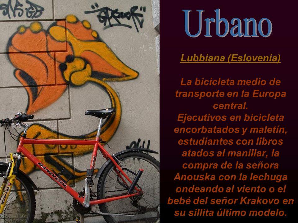 Lubbiana (Eslovenia) La bicicleta medio de transporte en la Europa central.