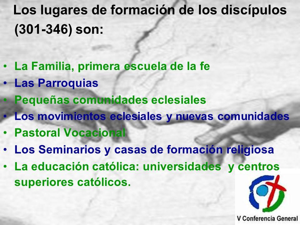 Los lugares de formación de los discípulos (301-346) son: La Familia, primera escuela de la fe Las Parroquias Pequeñas comunidades eclesiales Los movi