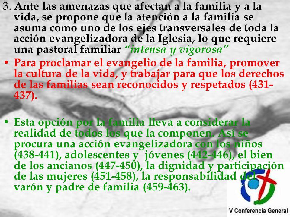 3. Ante las amenazas que afectan a la familia y a la vida, se propone que la atención a la familia se asuma como uno de los ejes transversales de toda