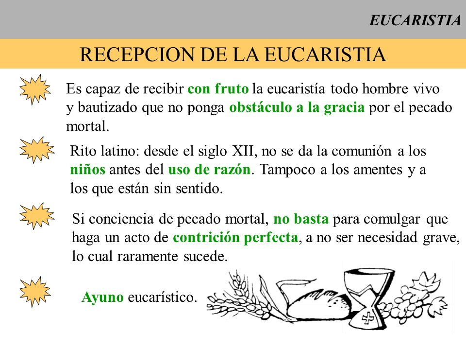 EUCARISTIA RECEPCION DE LA EUCARISTIA Es capaz de recibir con fruto la eucaristía todo hombre vivo y bautizado que no ponga obstáculo a la gracia por