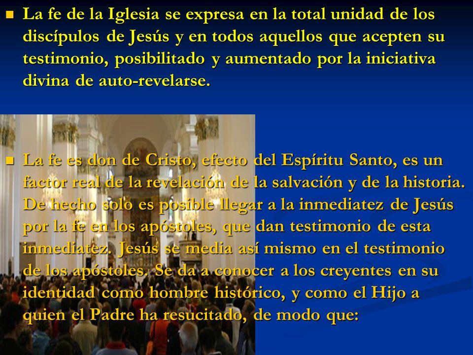 La fe de la Iglesia se expresa en la total unidad de los discípulos de Jesús y en todos aquellos que acepten su testimonio, posibilitado y aumentado p