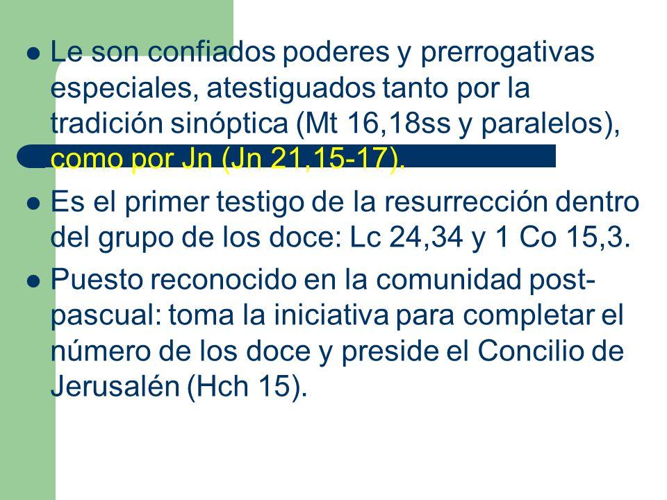 Le son confiados poderes y prerrogativas especiales, atestiguados tanto por la tradición sinóptica (Mt 16,18ss y paralelos), como por Jn (Jn 21,15-17)