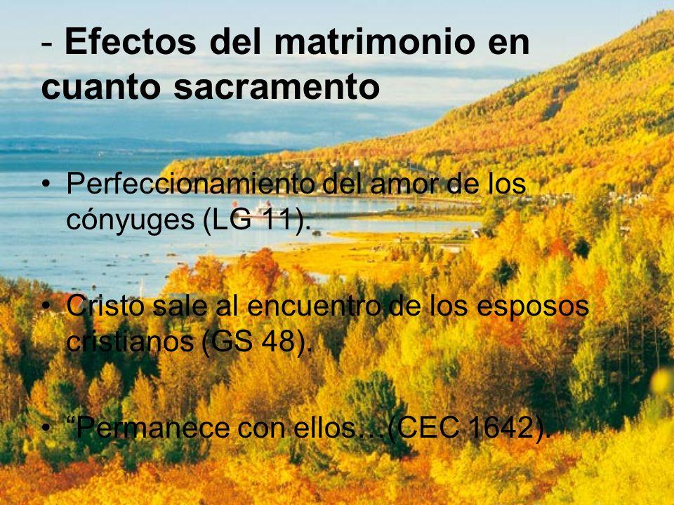 - Efectos del matrimonio en cuanto sacramento Perfeccionamiento del amor de los cónyuges (LG 11). Cristo sale al encuentro de los esposos cristianos (