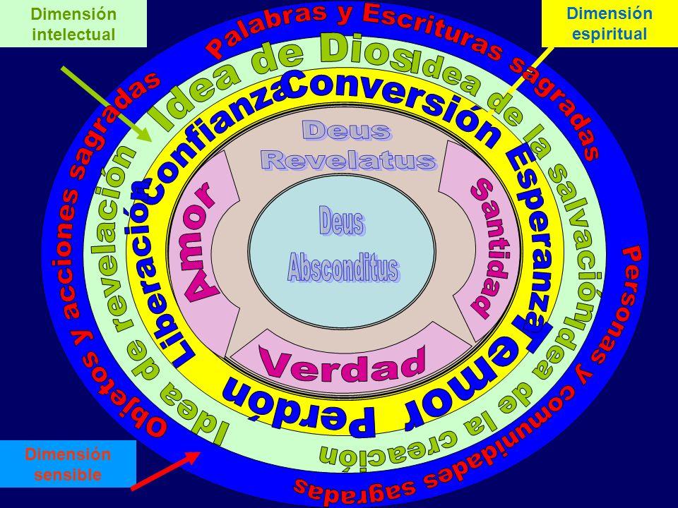 Dimensión sensible Dimensión intelectual Dimensión espiritual
