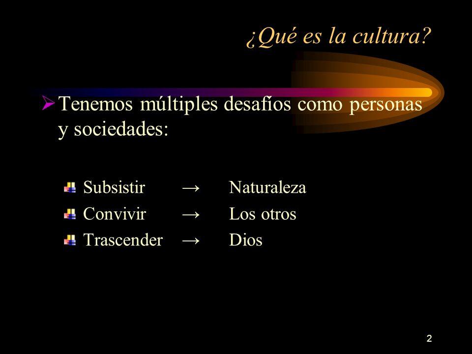 3 ¿Qué es la cultura.