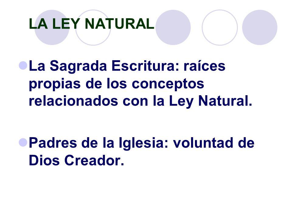 LA LEY NATURAL La Sagrada Escritura: raíces propias de los conceptos relacionados con la Ley Natural. Padres de la Iglesia: voluntad de Dios Creador.