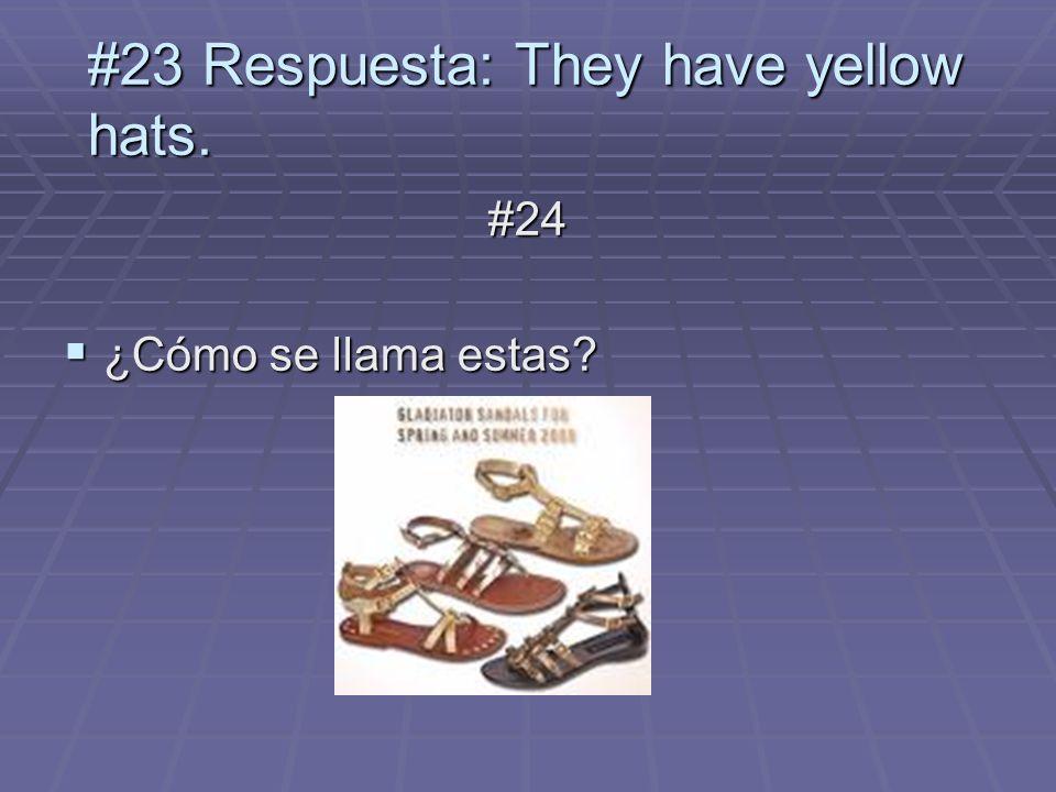 #24 ¿Cómo se llama estas? ¿Cómo se llama estas? #23 Respuesta: They have yellow hats.