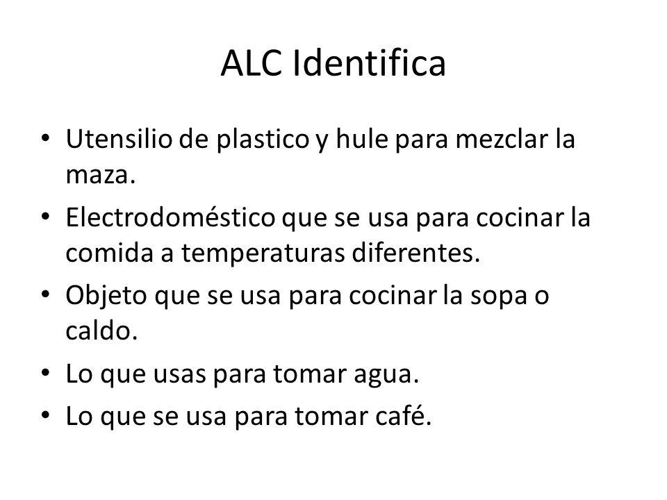 ALC Identifica Utensilio de plastico y hule para mezclar la maza.