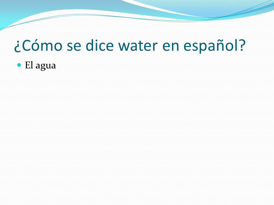 ¿Cómo se dice water en español? El agua